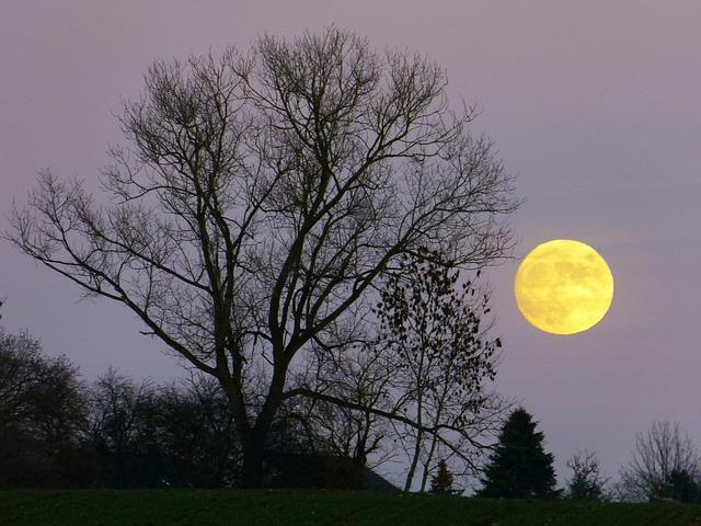 【天体観測】拝見しましょう。仲秋の名月、スーパームーン!